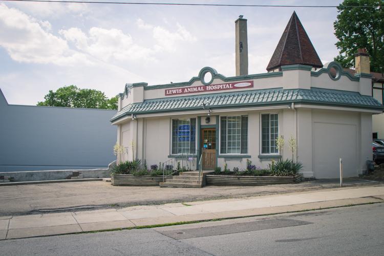 Lewis Animal Hospital | Cincinnati, Ohio 45215 > Home